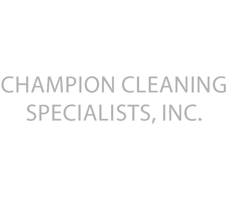 champion cleaning logo